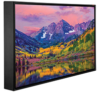 49-inch Peerless-AV Xtreme Outdoor Display